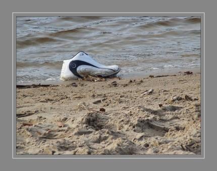 Der Spülsaum ist ein Uferbereich, an dem Material abgelagert (angespült) wurde. Er zieht sich oft entlang des Gewässers und kann durch vergangene Wasserstandsschwankungen mehrfach auftreten.