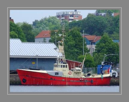 """Der aus Eiche 1962 gebaute Kutter wurde um Grönland bis Ende 1995 als Polizei- und Rettungsschiffeingesetzt. Danach fuhr er bis 1998 als Tauchschiff und bis 2007 als Privatschiff unter dem NamenBjalfem. Seit 2008 wird das im Originalzustand befindliche Schiff restauriert. Unter dem ursprünglichen Namen """"KIMIK"""" (= grönlandisch: Stärke, Kraft) mit Heimathafen Store Oxeoe (DK) steht es nun für Exkursionen aller Art"""