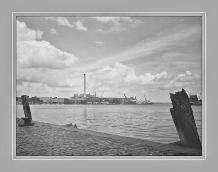 Analoges Foto mit Olympus XA2 aufgenommen und vom Negativ gescannt.